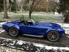 Cobra with graphite trim and wheels. Beautiful blue.