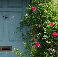 No21 Interiors, Painting & Decorating: Oval Room Blue & Deep Pink Roses