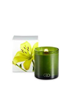 Gilt의 The Candle Shop 세일 중 Viva Candle (6 OZ)