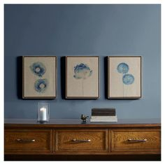 Blue Print Botanical