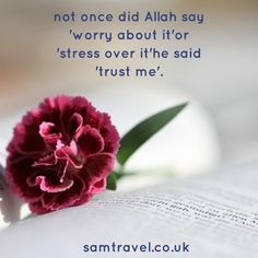 not once did Allah say 'worry about it'or 'stress over it'he said 'trust me'. #islam #muslim #islamic #islamicquotes #islamicreminder #hajj #umrah #muslimah #muslims #muslimah #muslim #muslimstyle #allah #samtravel #travelphotography #travel #travellers #hajj2017