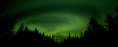 The Northern lights in Swedish Lapland