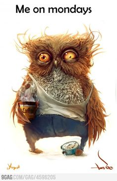 This what I look like in the morning because I am a night owl. <<<<<<<< partly true- if the owl was female XD Portrait Art, Make Me Smile, Owls, Illustration Art, Illustrations, Funny Pictures, Funny Images, Monday Pictures, Animal Pictures