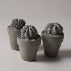 concrete cacti