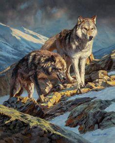 Wildlife Paintings, Wildlife Art, Animal Paintings, Animal Drawings, Fox Art, Illustrations, Fauna, Western Art, Art Auction