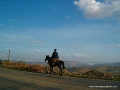 Yol ve yolcu