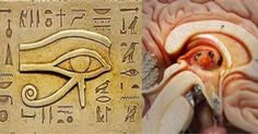 Ancient Egyptians Knew How to Unleash the Power of the Pineal Gland | RiseEarth