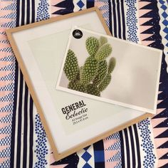 Great new General Eclectic frames have arrived in store today and our print room is overflowing. Grab a print and a frame and away you go! #frameityourself #stfdnz #generaleclectic #simplycreative #andthemattsarewhite