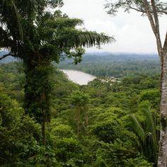"""Périple en Amazonie la descente de l'Amazone = un fantasme droit sorti du livre de Conrad. Dans cet océan de verdure, la seule route est celle du fleuve. Les séjours se font (pour la plupart) depuis Manaus au Brésil et traversent villages amérindiens et villes de Belém ou d'Aldogoal. Indispensable, le bateau traditionnel appelé """"tapouille"""". Le petit truc : la partie de domino sur le pont A savoir :  voyager léger, la chambre aura le plus souvent l'apparence... d'un hamac."""