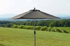Bryant 9 Ft. Patio Umbrella Eclectic Frames, Patio Shade, Canopy, Backyard, Shades, Outdoor Decor, Patio, Backyards, Sunnies