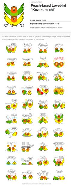 """I made LINE sticker! I am making bird's LINE sticker.  It is a sticker of cute Rosy-faced lovebird.  Peach-faced Lovebird """"Kozakura-chi""""  It's a sticker of cute lovebird. Birds in order to speak for your feelings. Simple design that can be used in everyday. Bird, parakeet enthusiast, to the woman.  Please click share.  LINE STORE URL http://line.me/S/sticker/1114295 Please search for MamelurihaKotori."""