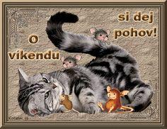 054 přání přáníčka krásný víkend Good Morning, Cats, Poster, Animals, Buen Dia, Gatos, Animales, Bonjour, Animaux