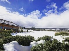 The beautiful #snow at #quantocklakes  #unique #barn #wedding #venue #Somerset #snow #beastfromtheeast #stormemma #winterwedding #weddingoffer #magicalskies #engaged #isaidyes #instawedding #instasnow #instagood #bridebook #loveforsomerset