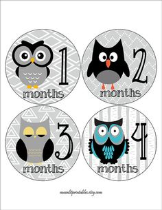 Owl Monthly Baby Stickers FREE Newborn Set by MoonLitPrintables, $8.00