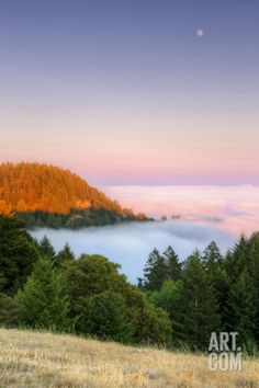 Fog and Moon from Bolinas Ridge, Mount Tampalais Photographic Print by Vincent James at Art.com
