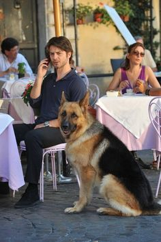 German Tv Shows, Loyal Friends, German Shepherd Dogs, T Rex, Dogs And Puppies, Tv Series, Film, Couple Photos, Movies