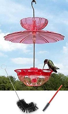 Aspects HummBlossom Hummingbird Feeder Package BestNest http://www.amazon.com/dp/B01DKXFEV8/ref=cm_sw_r_pi_dp_qNahxb0H57A88