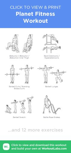 Planet Fitness Workout –click to view and print this illustrated exercise plan created with #WorkoutLabsFit