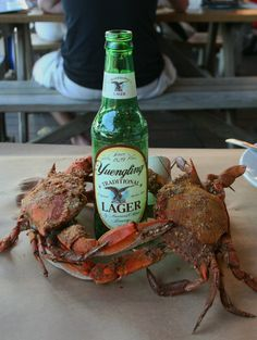 It's ok to play with your food when you're eating crabs and drinking beer at Nick's Fish House in Baltimore.  Let the good times roll!