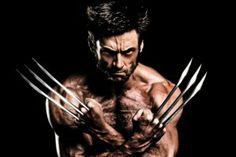 """Gene de """"Wolverine"""" descoberto acidentalmente por cientista de Harvard – Portugal Mundial"""