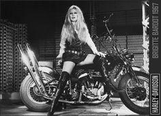 Brigitte rules