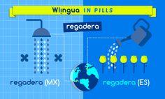 """Los nombres de algunas cosas son distintos en Europa y en América. En el caso de """"la regadera"""", la confusión está servida. Dime dónde está tu regadera y te diré en qué lado del Atlántico estás. #aprendeespanol with Wlingua (www.wlingua.com)"""