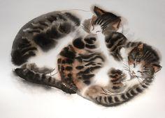 Two sleeping tabby kittens