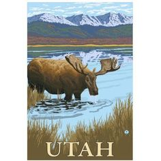 Moose Drinking - Utah: Retro Travel Poster by Eazl Fine Art Print, Size: 24 x 36, Multicolor