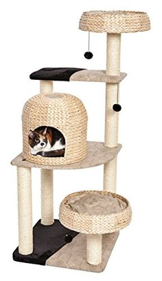 Midwest Homes for Pets Biscayne Type Cat Tree MidWest Hom... https://www.amazon.com/dp/B01EN1BS5W/ref=cm_sw_r_pi_dp_x_eTt2yb4B11P3G