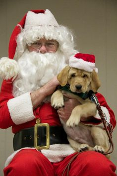 awww-Merry Christmas !!!!!