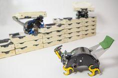 Self-organizing robots: Robotic construction crewnees no foreman