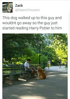 Sharing the magic of Harry Potter.