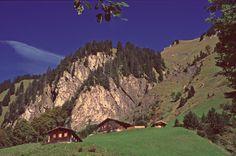 Traufbachtal #Alpe bei #Oberstdorf