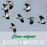 Cómo migrar Blogger a WordPress - La Guía Completa