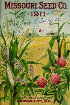 Missouri Seed Co - Catalog of seeds for farm and garden: