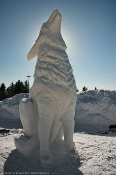 Wolf sculpture made out of snow and displayed at the 2011 Silver Skate Festival held in Edmonton, Alberta, Canada. Winter Wonder, Winter Fun, Winter Snow, Snow Sculptures, Sculpture Art, Metal Sculptures, Abstract Sculpture, Ice Art, Snow Art