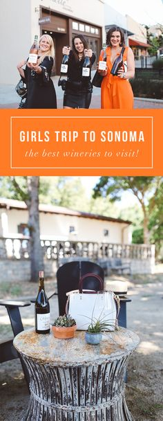Best Sonoma Valley California wineries! Check them out: http://whimsysoul.com/luxury-weekend-healdsburg/