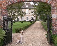 With 500 acres of Capability Brown landscape to explore, dog friendly Stapleford Park is PERFECT for dog lovers!