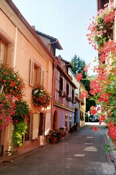 Alsace, France #places #holiday #travel