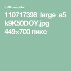 110717398_large_a5k9K50DOY.jpg 449×700 пикс