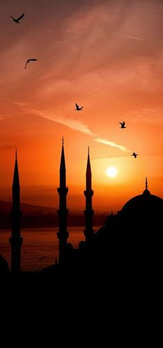 Capturing silhouette of Blue Mosque, Istanbul, Turkey in an evening Sunset. Places Around The World, Around The Worlds, Wonderful Places, Beautiful Places, Foto Blog, Blue Mosque, Foto Art, Jolie Photo, Amazing Sunsets