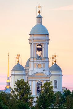 Prince Vladimir Cathedral, St. Petersburg (by Igor Litvyak)