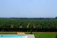 In de natuur Montbrió del Camp maar niet te ver van de Spaanse Costa Dorada is dit prachtige landhuis te vinden.
