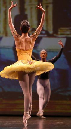 "Anastasia Kolegova and Denis Matvienko, ""La Bayadére"", Mariinsky Ballet at Dance Open Ballet Festival, April 2013, Saint Petersburg, Russia Photographer Stas Levshin"
