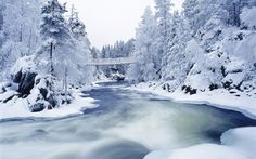 Cool Winter River