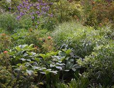 http://lepamphlet.com/category/jardin-residentiel/page/6/