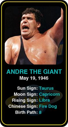 #Famous #WWE #Wrestlers: Andre the Giant - Check out more famous WWE wrestlers here! https://www.astroconnects.com/galleries/celeb-featured-galleries/famous-wwe-wrestlers #astrology #wrestling #wrestlers #andrethegiant