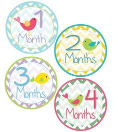 BESTSELLER! Baby Girl Bird Monthly Onesie Sticker... $9.95