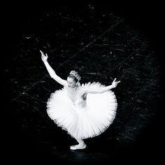 So graceful. Paris Photography, Modern Photography, Dance Photography, Ballet Images, Ballet Photos, Ballet Dancers, Ballerinas, Photo Facebook, Work Inspiration