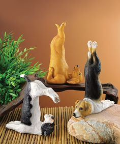 Look what I found on #zulily! Zen of Canine Yoga Dog Statuary #zulilyfinds